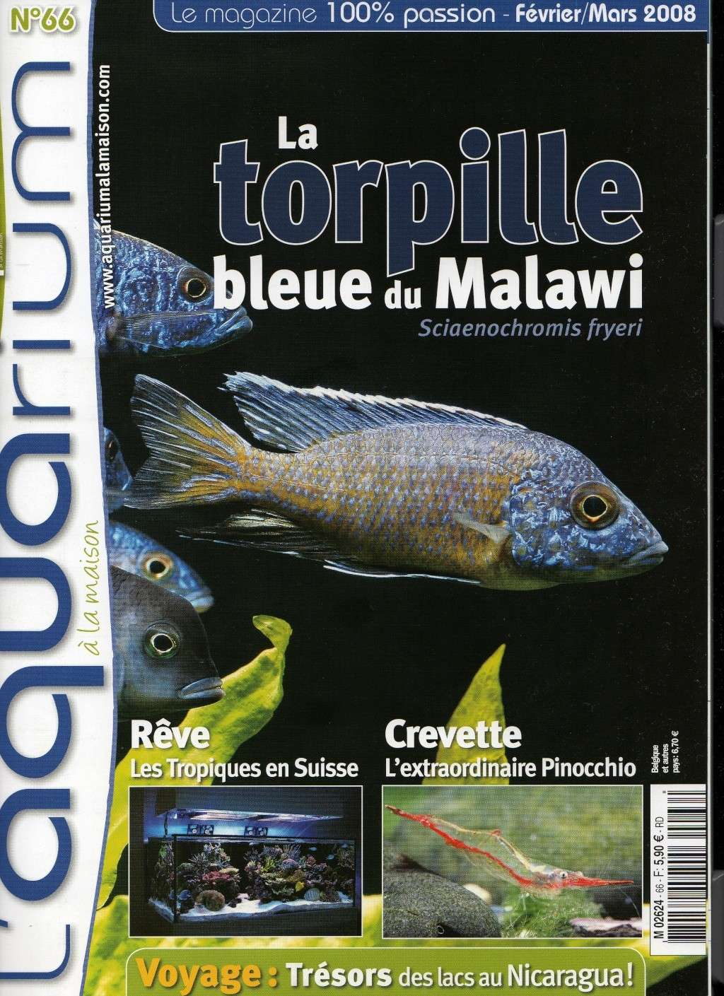 Article aquarium la maison n 66 for Aquarium a la maison pdf