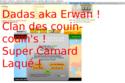 http://i34.servimg.com/u/f34/11/04/17/93/th/concou12.png