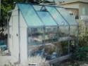 Serres,terrarium,tourbières