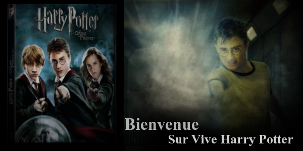 Vive Harry Potter