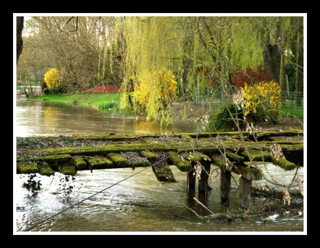 rivier10.jpg