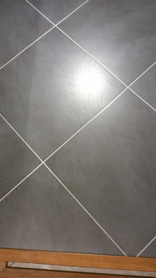 Carrelage gris anthracite salissant 28 images 1000 id for Carrelage 80x80 gris