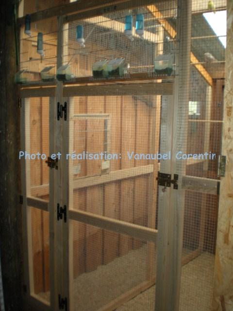 Nouveau projet d 39 une voli re for Voliere en bois exterieur