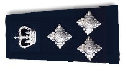 Assistant Commissioner