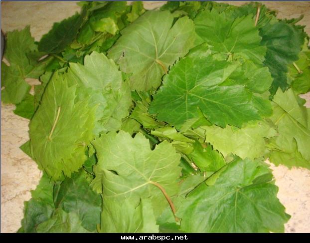 محشي ورق العنب الملوخية الخضراء