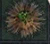 http://i34.servimg.com/u/f34/12/94/57/61/eieiai10.jpg
