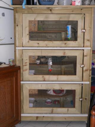 La cage fait maison page 2 for Accessoire furet fait maison