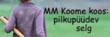 KK:pilkupüüdev selg