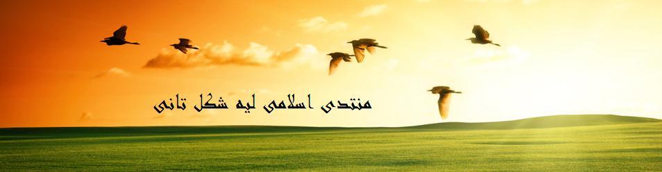 احمد يوسف