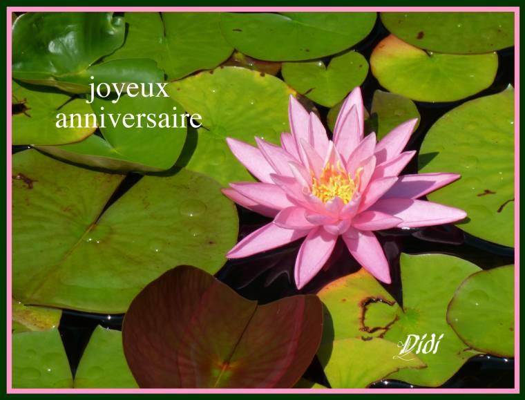 Joyeux Anniversaire Nicole Barberon Le Coin Détente