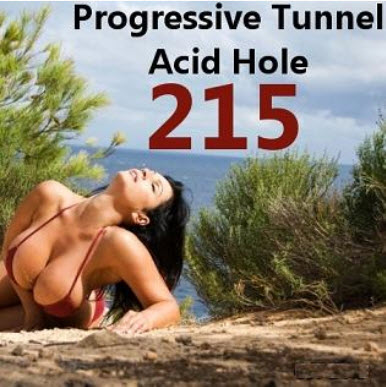 VA - Progressive Tunnel - Acid Hole - 215 (2010)