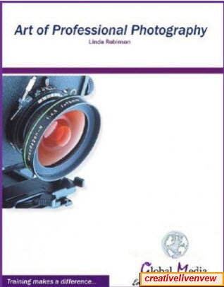 Art of Professional Photography (Reposted - full ebook)