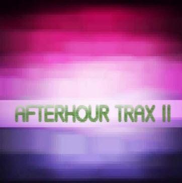 VA - Afterhour Trax II (2010)