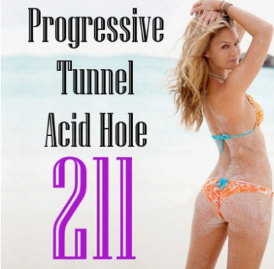 VA - Progressive Tunnel - Acid Hole - 211 (04.08.2010)