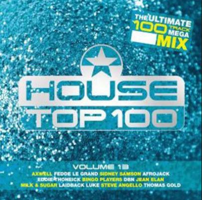 VA - House Top 100 Vol.13 (2010)
