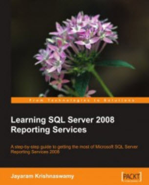 Learning SQL Server 2008 Reporting Services: From Technology To Solution