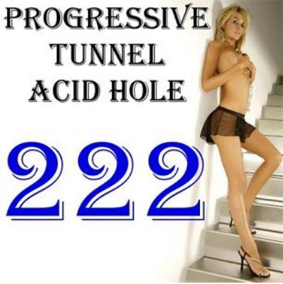 VA - Progressive Tunnel - Acid Hole 222 (2010)