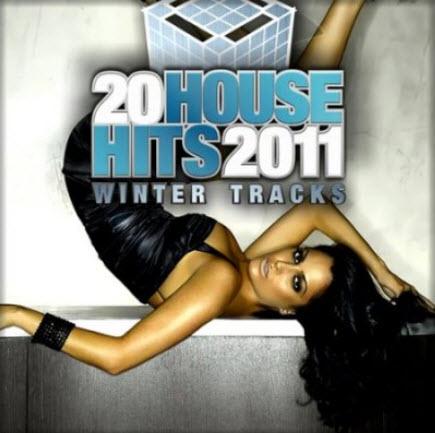 VA - 20 House Hits 2011: Winter Tracks (2010)
