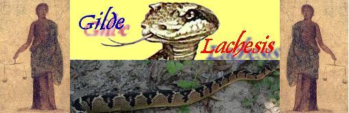 Gilde Lachesis