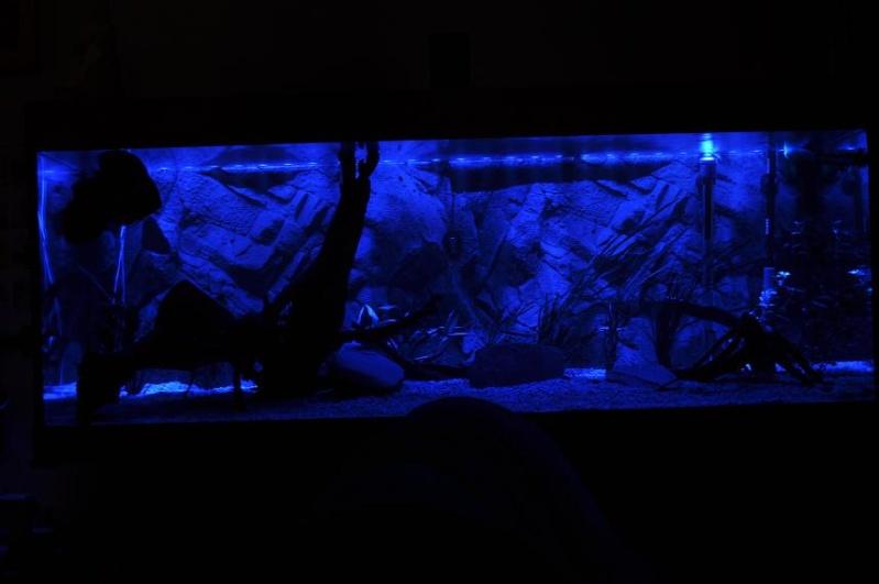 rampe leds bleue pour lumi re de lune. Black Bedroom Furniture Sets. Home Design Ideas
