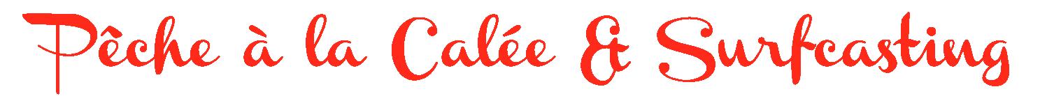 http://i34.servimg.com/u/f34/15/64/60/85/logo_p13.png