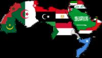 أخبار عربية و عالميه