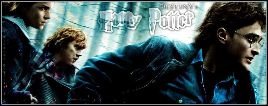Hogwarts Destiny
