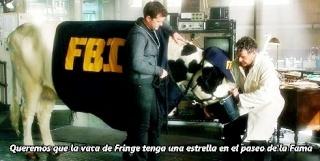 Queremos que la Vaca de Fringe tenga una estrella en el paseo de la Fama