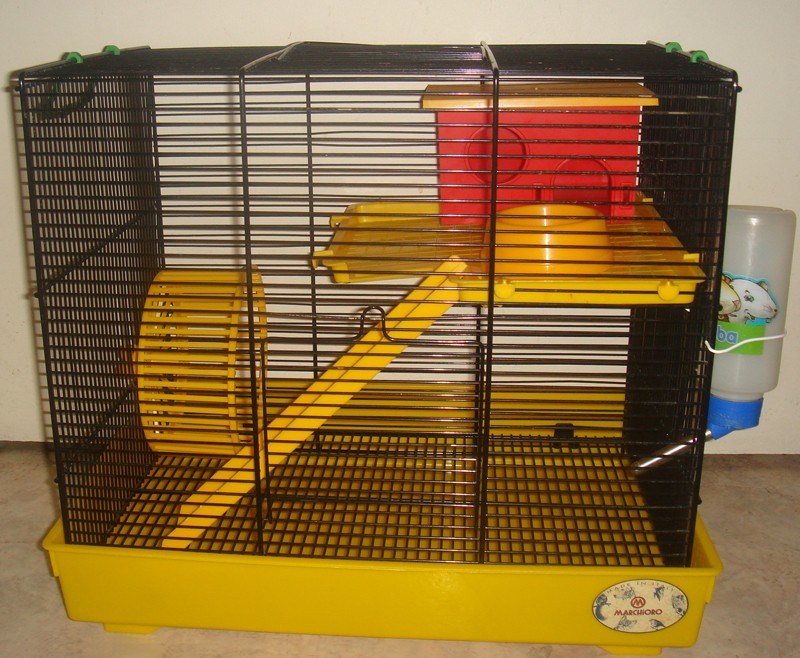 vente cage et accessoires pour hamster. Black Bedroom Furniture Sets. Home Design Ideas