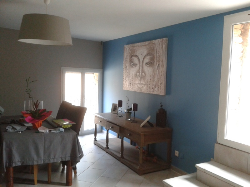 Quelle peinture choisir pour un salon simple quel bleu for Peunture simple salon