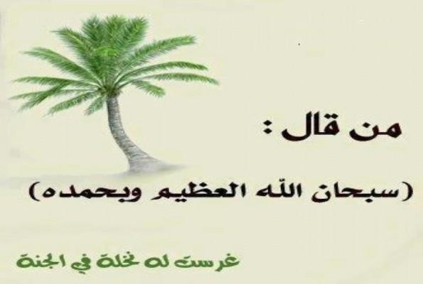 Islam and public life  منتدى الاسلام والحياه العامه