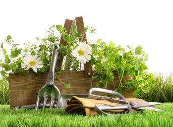 am nagement jardin plus potager. Black Bedroom Furniture Sets. Home Design Ideas