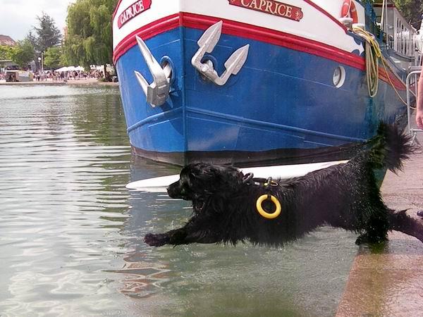 Travail à l'eau et Sauvetage nautique