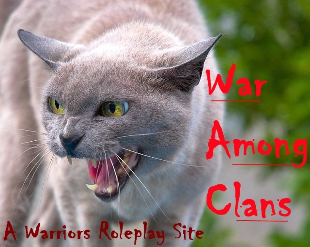 War Among Clans